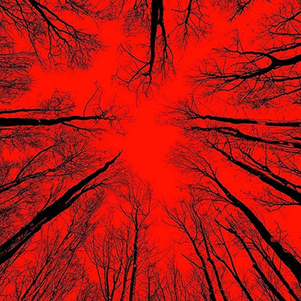 Blair Witch review – a scary but forgettable sequel